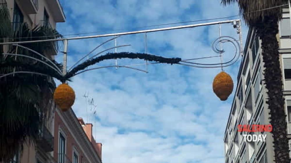 Limoni e delfini per luci d artista commercianti divisi loffredo